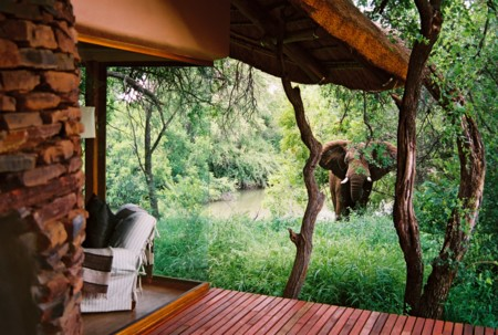 Sanctuary Makanyane Safari Lodge Elephant Outside Suite