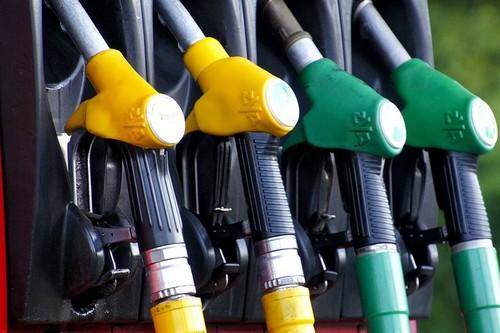 El biocombustible con aceite de palma, bajo lupa: ¿es tan bueno o tan malo como nos cuentan?