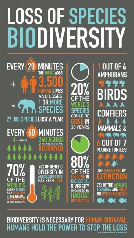 Biodiverisdad