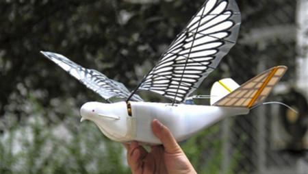 China posee un nuevo sistema de vigilancia masiva basado en aves robóticas