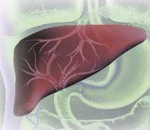 Nuevo test para detectar el cáncer de hígado a través de un análisis sanguíneo