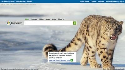 """La imagen de la Semana: """"Snow Leopard"""" en la portada de Live Search, ¿Por qué?"""