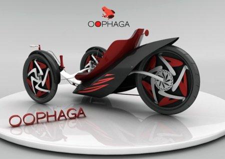 Oophaga, un nuevo método de transporte