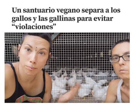 Gallinas