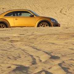 Foto 10 de 25 de la galería volkswagen-beetle-dune en Usedpickuptrucksforsale