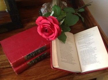 San Jorge... ¿dónde meto tanto libro?