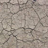 Si no se frena el cambio climático, 2035 podría ser un punto de no retorno