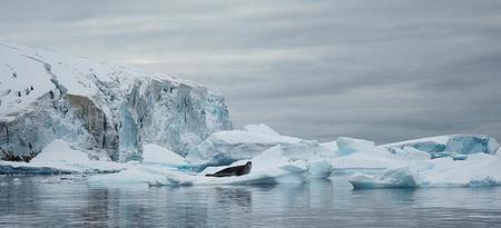 Antártida: una tasa de 10 dólares podría pagar medidas que eviten su deterioro