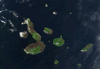 Islas Galápagos: entra en erupción el volcán La Cumbre
