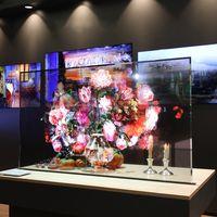 La nueva pantalla T-OLED de LG es transparente, con bordes casi invisibles y puede mostrar imágenes desde los dos lados