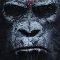 Foto 2 de 4 de la galería dawn-of-the-planet-of-the-apes-primeros-carteles en Espinof