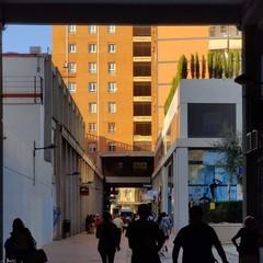 Foto 3 de 74 de la galería fotos-del-oneplus-7t-pro en Xataka