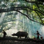 """Un pueblo """"falso"""" para posturear en Instagram: China ha entendido cómo funciona el turismo en el siglo XXI"""