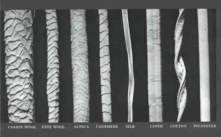 Fibras Al Microscopio