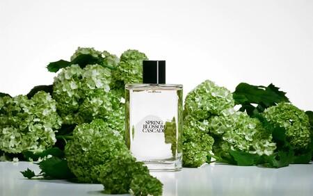 Zara Perfumes Verano 2021 03