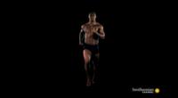 Homo Sapiens: cómo nuestro cuerpo se ha adaptado para hacernos mejores corredores