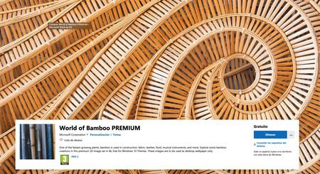 Bamboo Copia