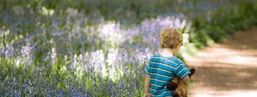 Por qué hacer creer a tu hijo que ya no le quieres es un castigo inadecuado: lo dejó solo para asustarle y lleva días desaparecido
