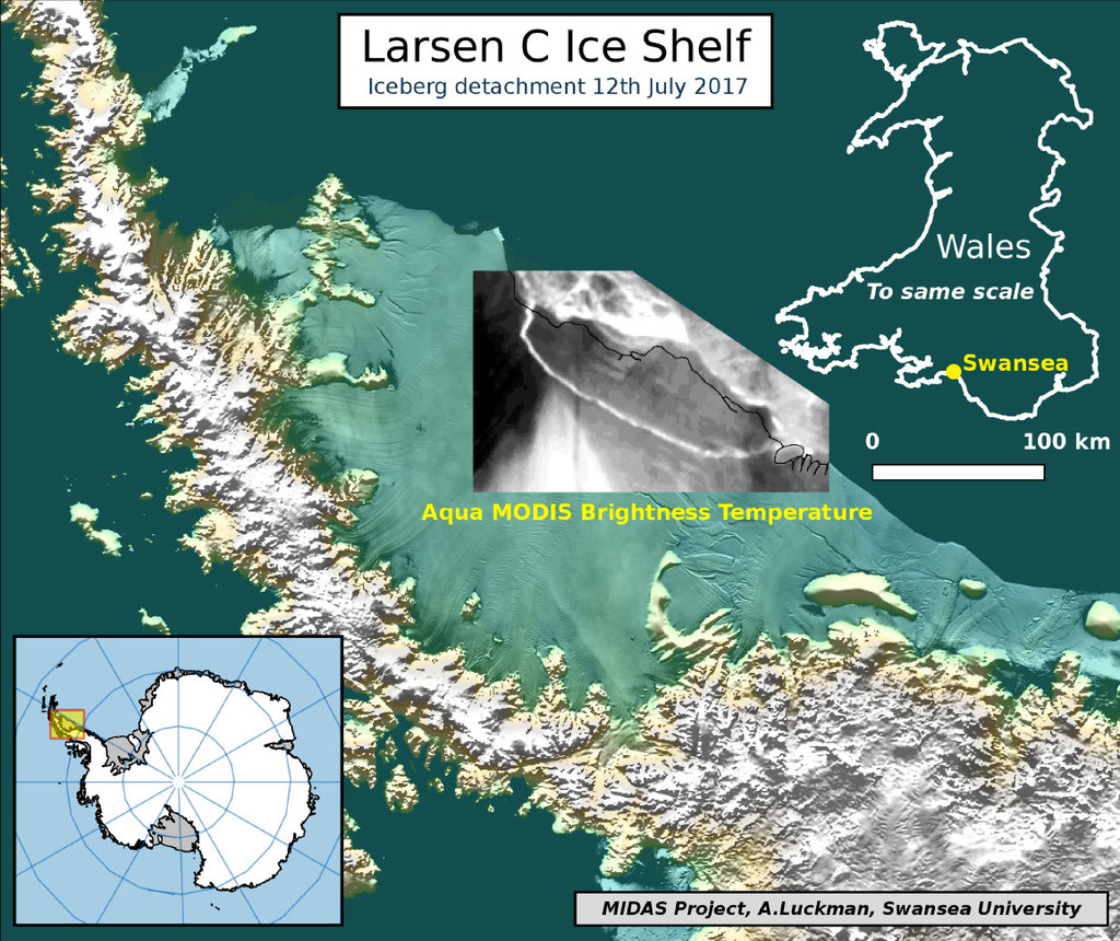 Iceberg Midas