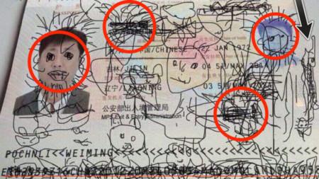 pasaporte fake