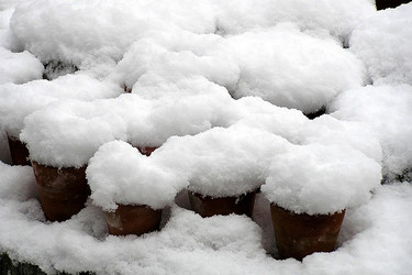Helado de nieve, ¿te animarías a probarlo?