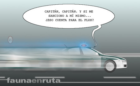 fauna en ruta - Guardia Civil