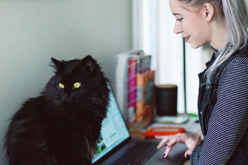 32 cursos universitarios online gratuitos que puedes comenzar en mayo, y con certificación incluida