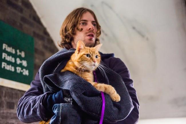 Imagen de A Street Cat Named Bob