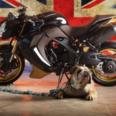 triumph-speed-triple-bulldog-by-vilner