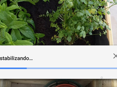 Cómo estabilizar un vídeo con Google Fotos para Android
