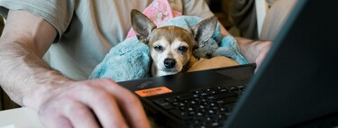 Soy responsable de seguridad informática en mi empresa y tengo que lidiar con que los trabajadores trabajen desde cualquier parte