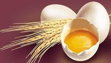 ¿El huevo es digestivo y ligero?