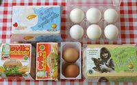 ¿Qué pasaría si nuestros hijos comieran huevos cada día?