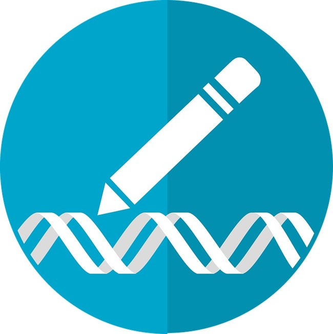 Gene Editing Icon 2375787 960 720