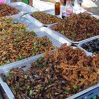 Año nuevo, dieta nueva: los insectos (enteros) ya se consideran un alimento en toda la Unión Europea