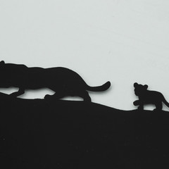 Foto 62 de 164 de la galería jaguar-e-pace-primer-contacto en Motorpasión