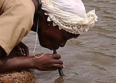 LifeStraw, purificador de agua por 2 $