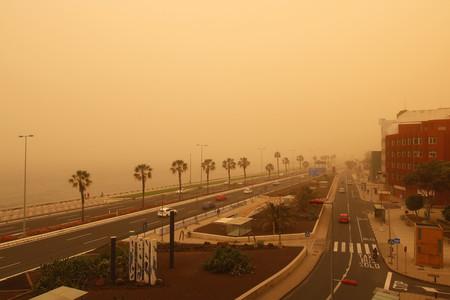 Calima, vientos huracanados, incendios y ¿langostas? Canarias está viviendo sus siete plagas
