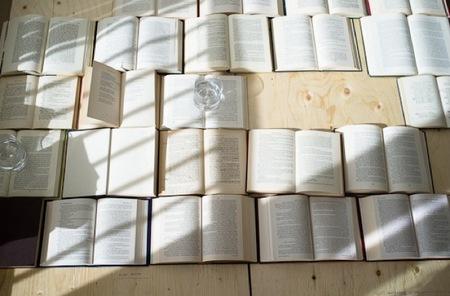 cabecero libros 2