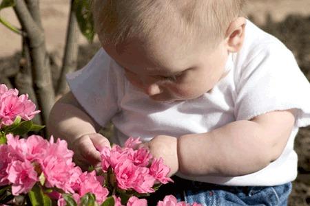 Cómo adaptar el jardín a los niños