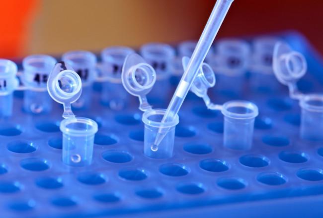 ¿Qué significa que Reino Unido permita la edición genética de embriones?