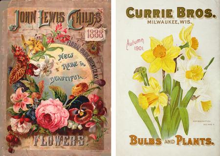Ilustraciones Revistas Botanica Y Anuncios Antiguos