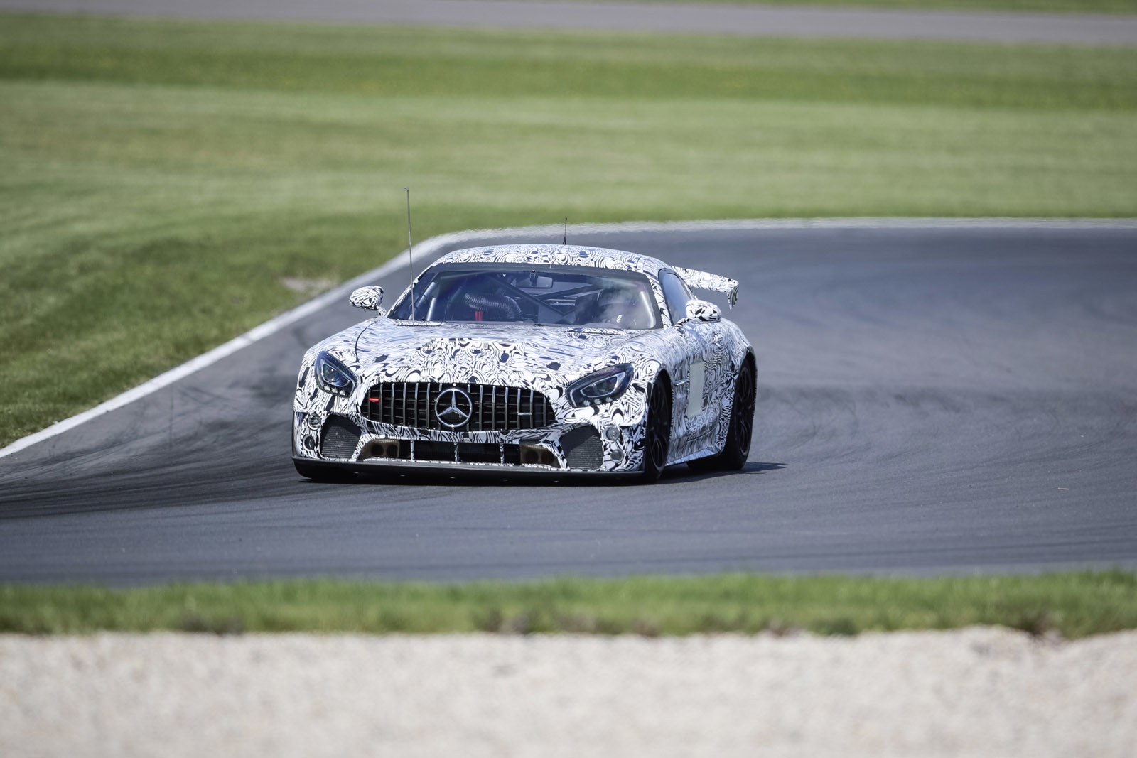 Foto de Mercedes-AMG GT4 (12/14)