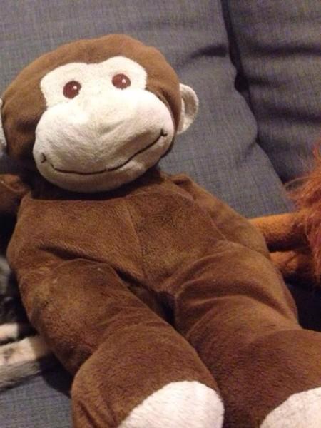 Pau perdió su adorado peluche y lo encontró gracias a las redes sociales