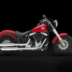 Foto 6 de 9 de la galería harley-davidson-fls-softail-slim en Motorpasion Moto