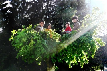 """""""El niño viene diseñado para experimentar el árbol"""". Entrevista a Isabel Fernández del Castillo (tercera parte)"""