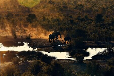 Zambezi Park en Victoria Falls, Zimbabwe.