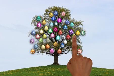 Tree 834129 640