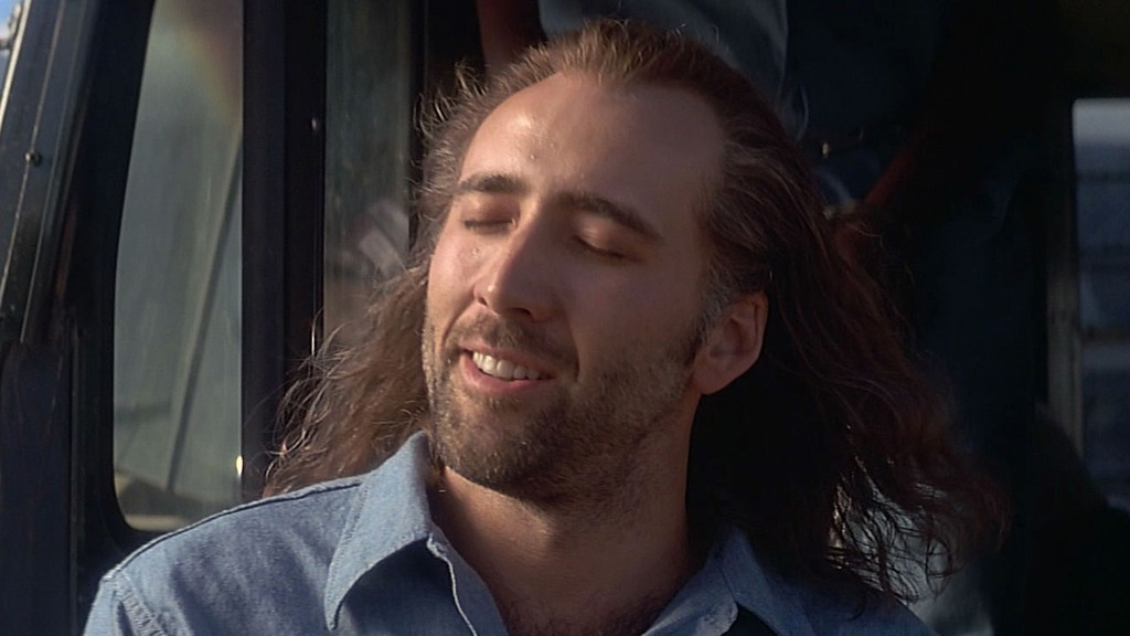 Nicolas Cage play Nicolas Cage in a movie about... oh Nicolas Cage!