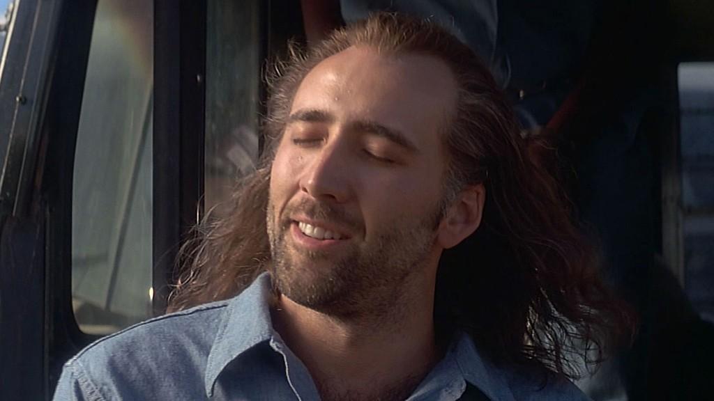 Nicolas Cage play Nicolas Cage in a movie about... oh Nicolas Cage!